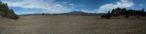 New Mexico 2013 264 - Copy