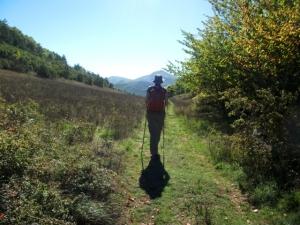 Abruzzo meadow