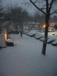 Winter-yard