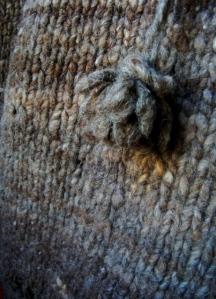 Camel-detail