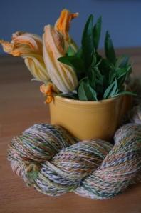PRS-zucchini&blossom
