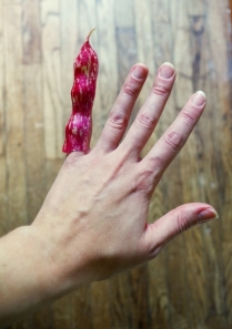 borlotti finger