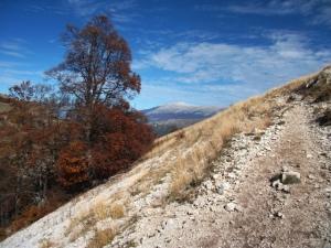 Abruzzo October 2013-trail
