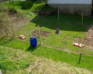 garden after-left
