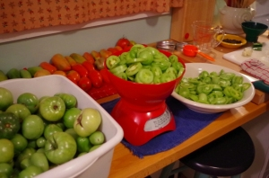 closing-tomatoes
