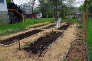 garden 16 start
