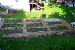 harvest garden full