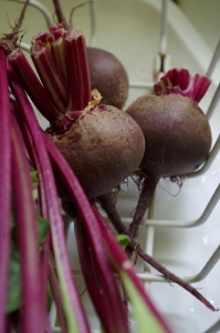 july-beets