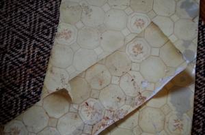 jan-old-floor